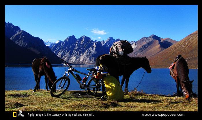 单车与马匹